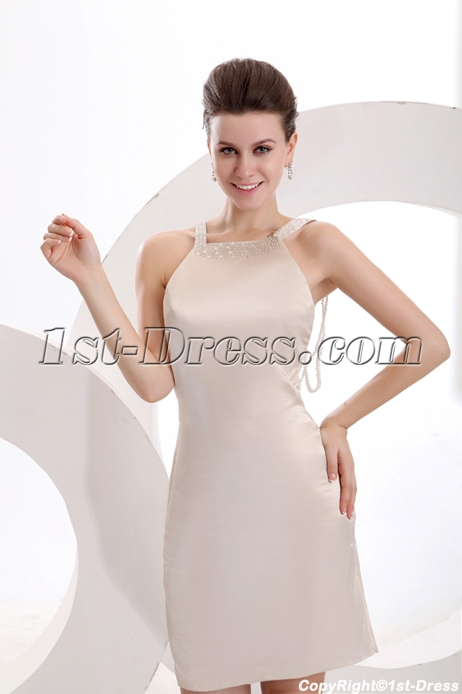 images/201312/big/Champagne-Sexy-Backless-Celebrity-Gown-3765-b-1-1387195569.jpg
