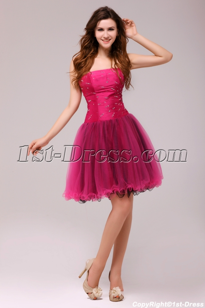 Fuchsia And Black Gorgeous Junior Prom Dresses Short 20131st Dress