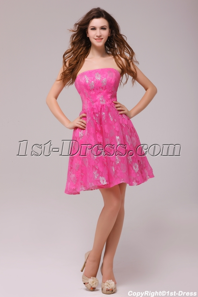 0bd48e674ba6 Hot Pink Short Lace Homecoming Party Dresses Cheap (Free Shipping)