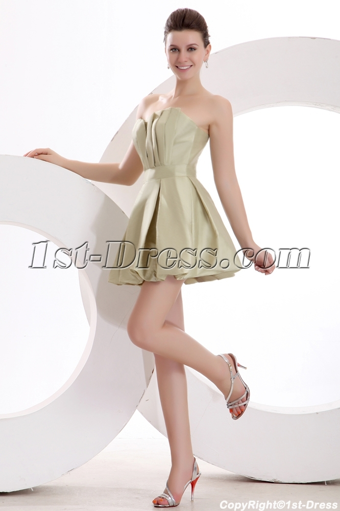 images/201312/big/Lovely-Sage-Taffeta-Bubble-Homecoming-Gown-for-Senior-3763-b-1-1387194744.jpg