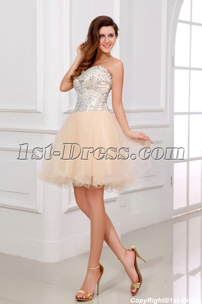 images/201312/big/Pretty-Puffy-Champagne-Cocktail-Dresses-3709-b-1-1386596603.jpg