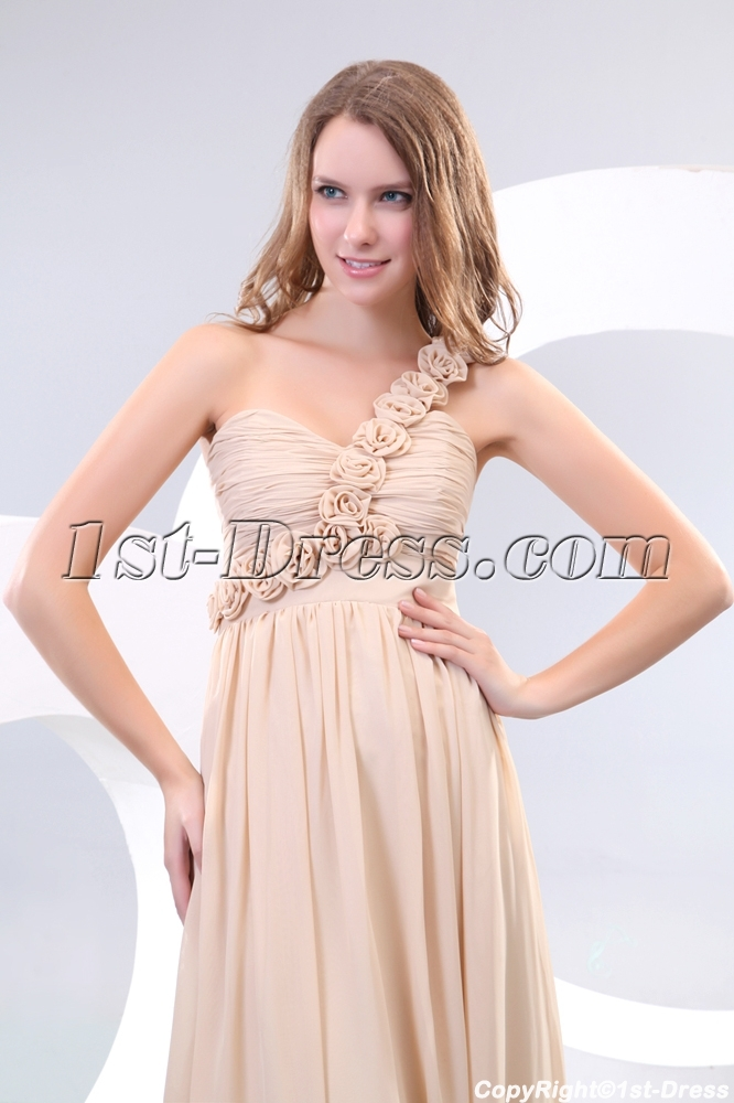 Stunning One Shoulder Champagne Plus Size Evening Dresses1st Dress