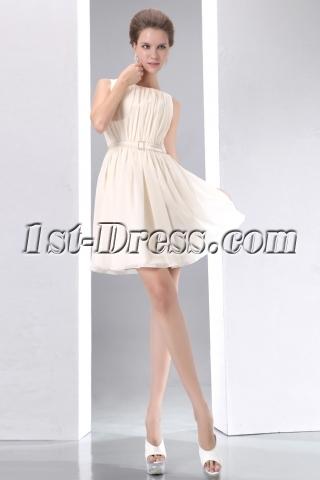 Champagne Vintage Short Chiffon Homecoming Dress