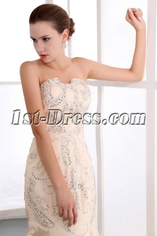 Terrific Champagne Sequin Sheath Engagement Dresses