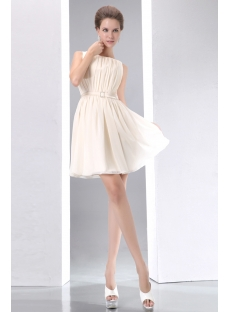 Champagne Vintage Short Chiffon Homecoming Dress
