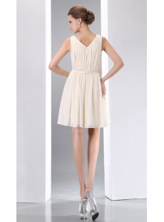 images/201401/small/Champagne-Vintage-Short-Chiffon-Homecoming-Dress-4125-s-1-1389867884.jpg