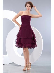 images/201401/small/Romantic-Grape-Layers-Short-Prom-Dresses-4161-s-1-1389975706.jpg