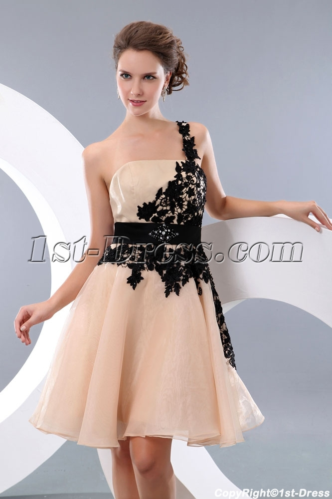http://www.1st-dress.com/images/201401/source/Champagne-and-Black-One-Shoulder-backless-Junior-Prom-Gowns-4171-b-1-1390040363.JPG