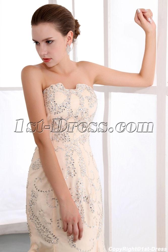 images/201401/big/Terrific-Champagne-Sequin-Sheath-Engagement-Dresses-4287-b-1-1390492207.jpg