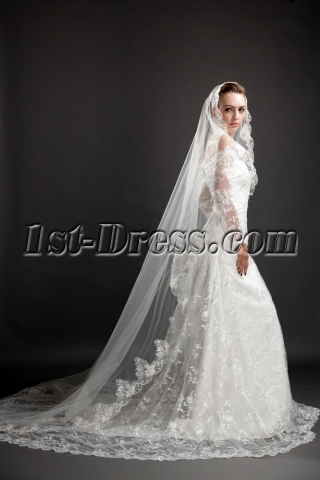 Pretty Long Lace Trim Wedding Vail