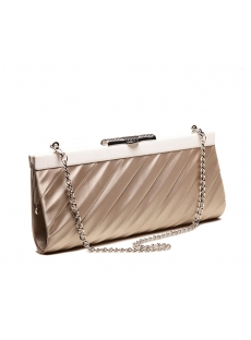 Romantic Champagne Satin Clutch Handbag