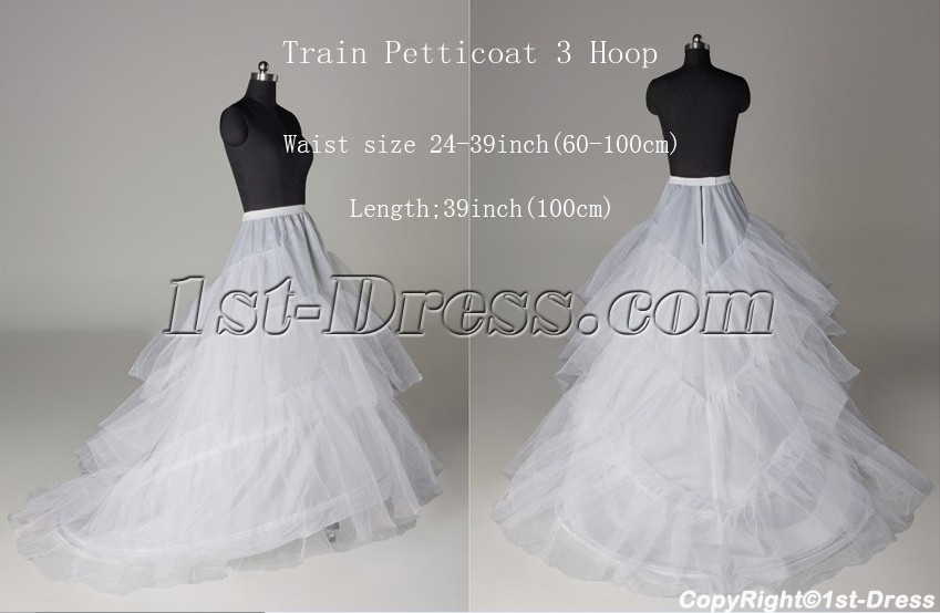 images/201402/big/3-Hoops-Layers-Petticoats-for-Wedding-Dresses-with-Train-4369-b-1-1391634785.jpg