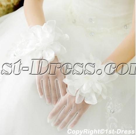 images/201402/big/Beautiful-Short-Flowers-Wedding-Gloves-4409-b-1-1391695147.jpg