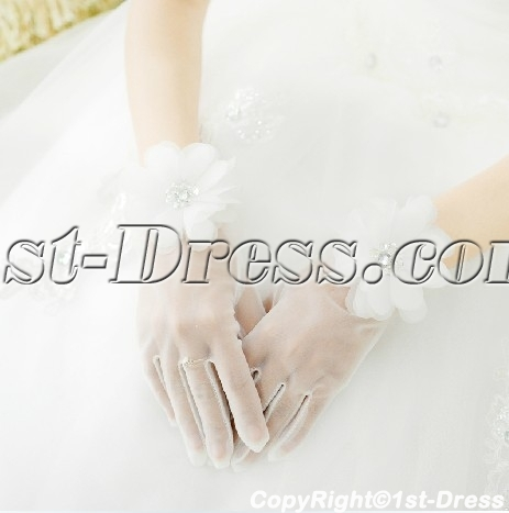 images/201402/big/Chic-Fingertips-Short-Wedding-Gloves-with-Flowers-4410-b-1-1391695253.jpg