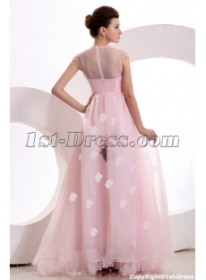 images/201312/small/Modest-Cap-Sleeves-Pink-Organza-Long-Evening-Dress-3741-s-1-1386778061.jpg