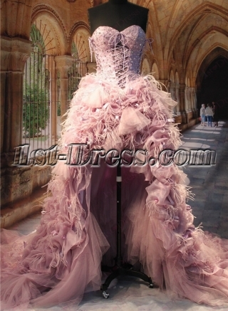 Luxury Ostrich Feather High Low Wedding Dresses