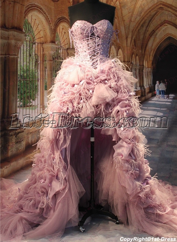 Luxury ostrich feather high low wedding dresses 1st for Wedding dress with ostrich feathers
