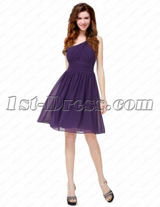 Elegant Chiffon One Shoulder Short Prom Dress