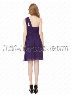 images/201604/small/Elegant-Chiffon-One-Shoulder-Short-Prom-Dress-4621-s-1-1459862008.jpg