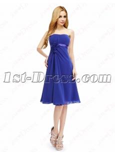 images/201604/small/Elegant-Royal-Blue-Short-Prom-Dresses-Cheap-4630-s-1-1460379705.jpg