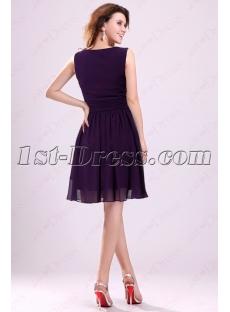 images/201604/small/Grape-V-neckline-Homecoming-Dresses-Cheap-Short-4627-s-1-1460379034.jpg
