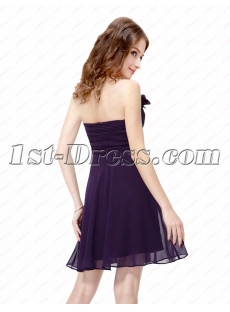 images/201604/small/Simple-Purple-Cocktail-Dresses-for-Juniors-4619-s-1-1459861357.jpg