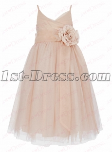 Lovely Nude Girls Party Dress