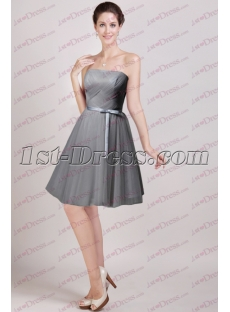 Silver Strapless Short Prom Gown 2016