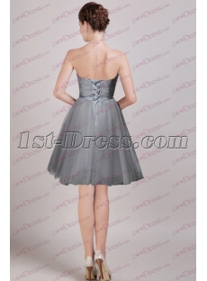 images/201608/small/Silver-Strapless-Short-Prom-Gown-2016-4735-s-1-1471953890.jpg