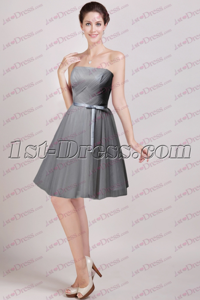 Silver Strapless Cocktail Dress