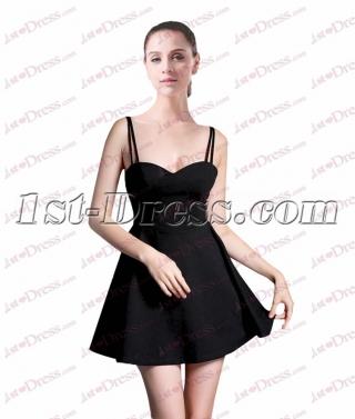 Simple Little Black Dress under 100