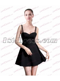Simple Little Black Dress under 100