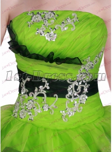 images/201611/small/Lovely-Black-and-Green-Quinceanera-Dress-for-2017-4798-s-1-1479293570.jpg