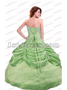 Terrific Sage Ball Gown Quinceanera Dress 2017
