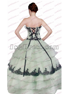 images/201611/small/Unique-Sage-and-Black-Ball-Gown-for-Sweet-15-4795-s-1-1479198174.jpg