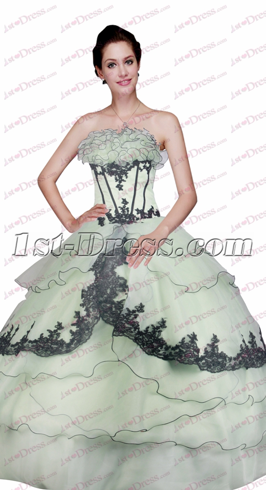 images/201611/big/Unique-Sage-and-Black-Ball-Gown-for-Sweet-15-4795-b-1-1479198174.jpg