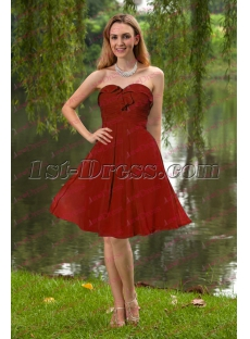 Simple Chiffon Knee Length Sweet 16 Dress