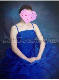 Champagne Taffeta Long Cheap Quinceanera Gown review image
